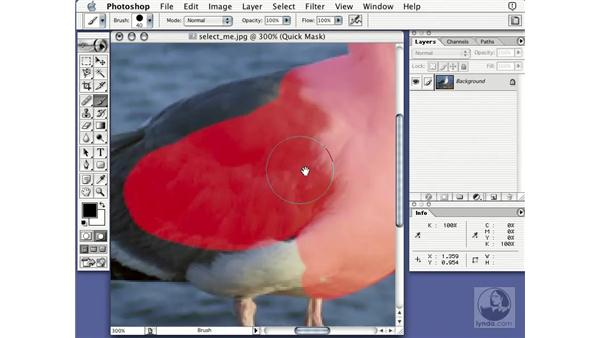 painting selections: Learning Photoshop 7