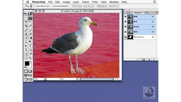 saving selections: Learning Photoshop 7