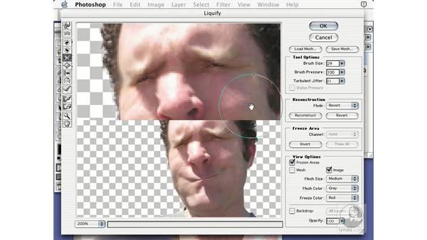 liquify introduction: Learning Photoshop 7