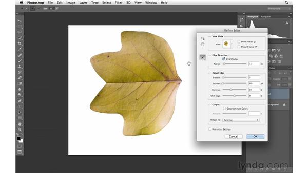 Removing an object from its environment: Photoshop for Photographers: Creative Effects