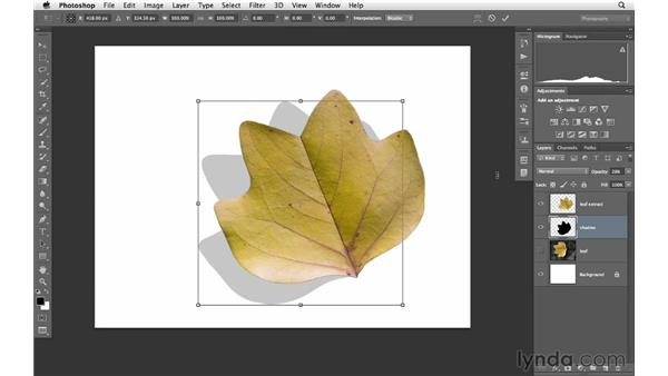 Creating a realistic shadow for an object: Photoshop for Photographers: Creative Effects