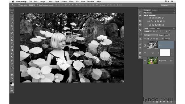 Building a dynamic digital infrared effect: Photoshop for Photographers: Creative Effects