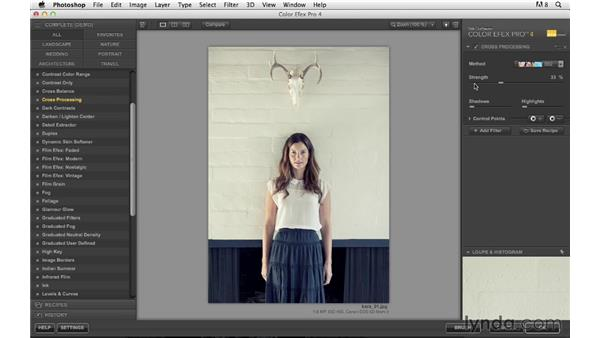 Enhancing color with Color Efex Pro by Nik: Photoshop for Photographers: Creative Effects