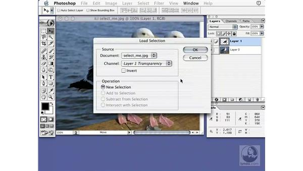 selections and layers: Learning Photoshop 7