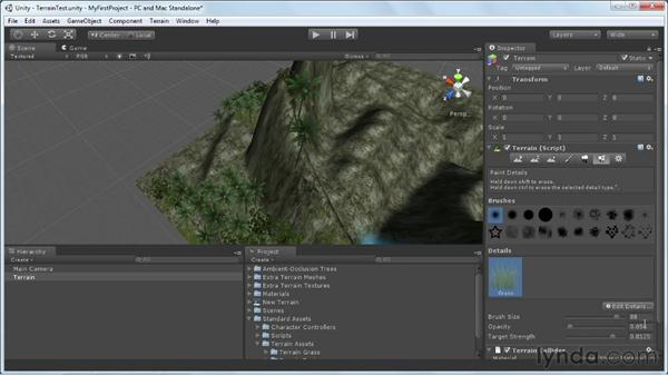 Painting grass, shrubs, and 3D geometry: Unity 3D 3.5 Essential Training