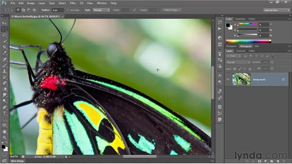 Introducing the Smart Sharpen filter: Photoshop CS6 One-on-One: Intermediate