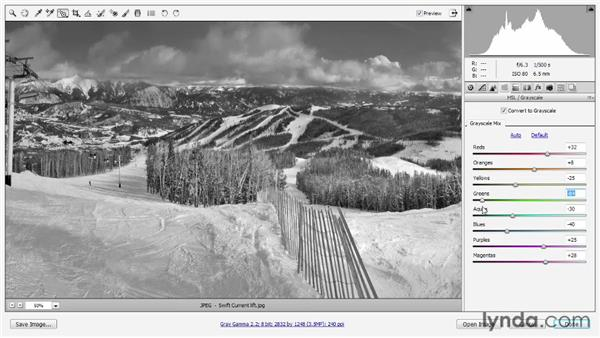Grayscale and Split Tone in Camera Raw: Photoshop CS6 One-on-One: Intermediate
