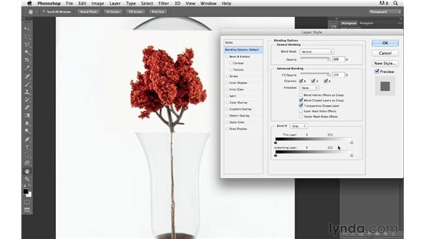 Adding the tree: Photoshop for Photographers: Compositing