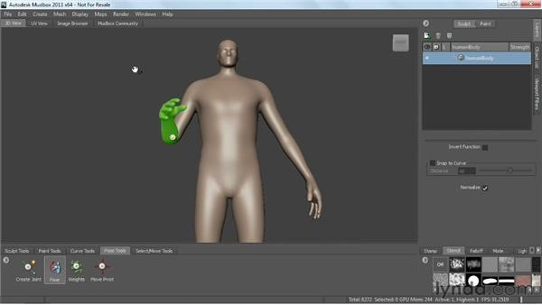 Introduction to joints and posing: Mudbox 2013 Essential Training