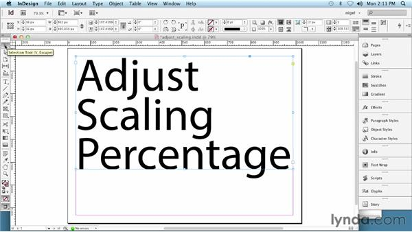 Scaling type: InDesign Typography (2012)