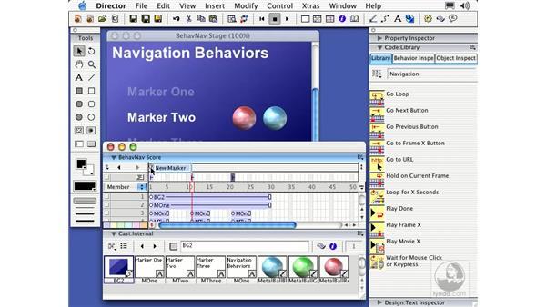 navigation behaviors: Director MX Essential Training