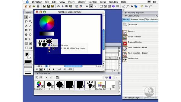 paintbox behaviors: Director MX Essential Training