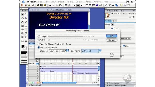 cue points (Peak LE / Mac): Director MX Essential Training