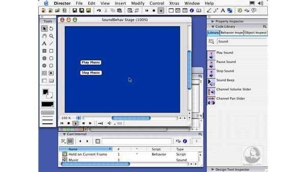 sound behaviors: Director MX Essential Training