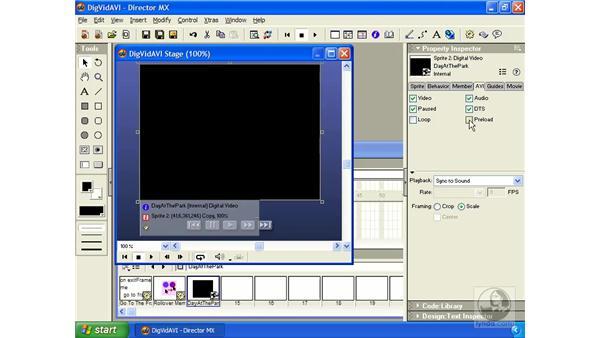 AVI files: Director MX Essential Training