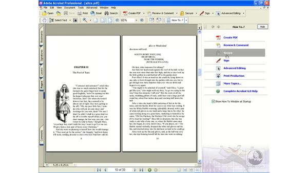 interface: Learning Acrobat 6