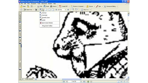 zoom tools: Learning Acrobat 6