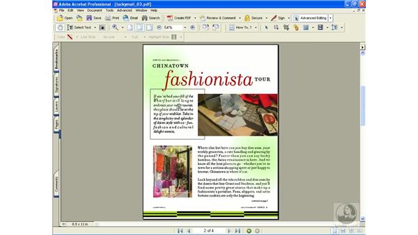 article magnification settings: Learning Acrobat 6