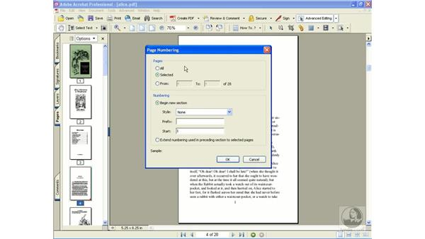renumbering pages: Learning Acrobat 6
