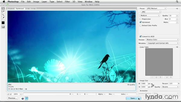 Creating graphics for web sites: Creating a First Web Site with Dreamweaver CS6