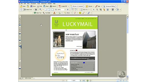 file attachment tool: Learning Acrobat 6