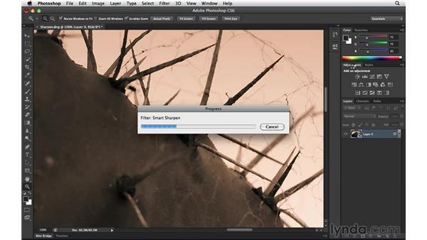Applying brush-based selective sharpening: Photoshop Insider Training: Enhancing Photos