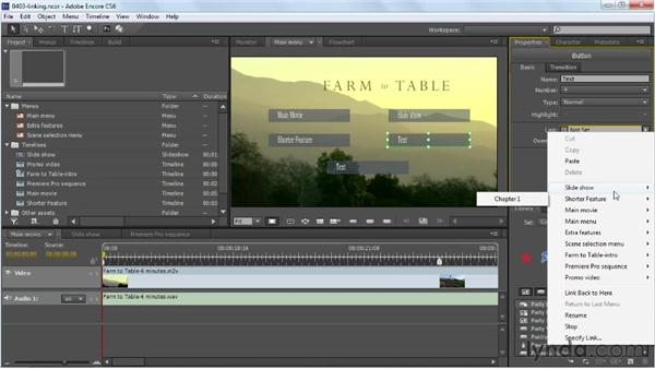 Linking assets and movie chapters to buttons: Up and Running with Encore CS6