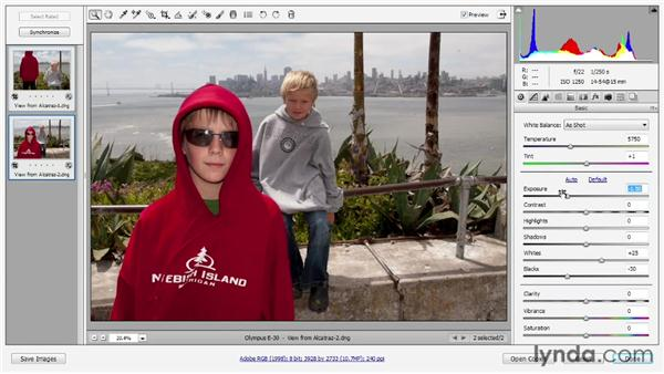 The revamped Exposure controls: Photoshop CS6 One-on-One: Advanced