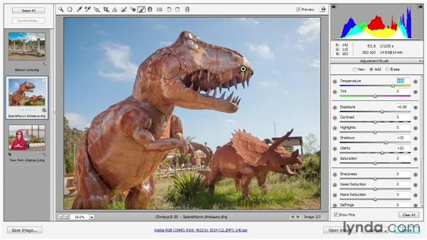 Painting edits with the Adjustment Brush: Photoshop CS6 One-on-One: Advanced