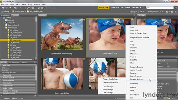 Editing Camera Raw images from Bridge: Photoshop CS6 One-on-One: Advanced