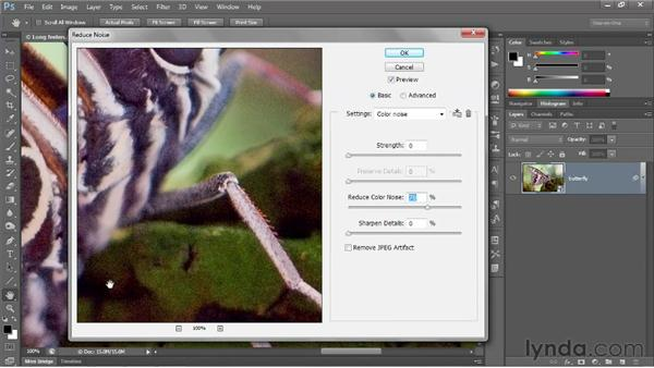 Correcting a noisy photo: Photoshop CS6 One-on-One: Advanced