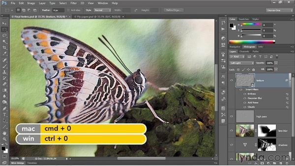 Creating texture by adding noise: Photoshop CS6 One-on-One: Advanced
