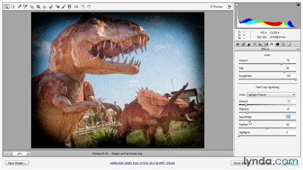 Adding noise grain and vignetting effects: Photoshop CS6 One-on-One: Advanced