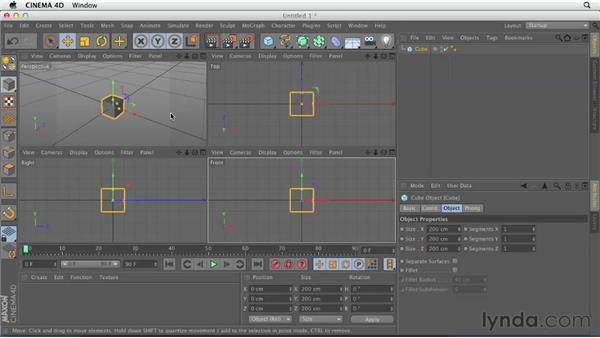 Looking at navigation and mouse setup: CINEMA 4D Essentials 1: Interface, Objects, and Hierarchies
