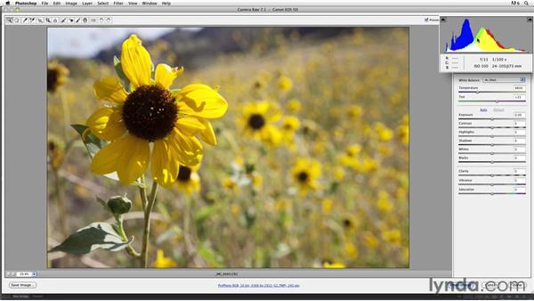 Working in an advanced color space: Inkjet Printing for Photographers
