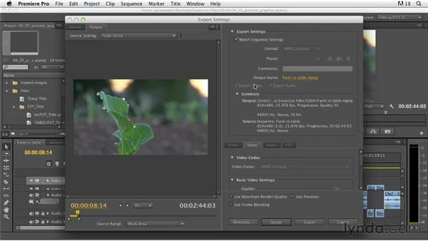 Presenting graphics work: Documentary Editing with Premiere Pro