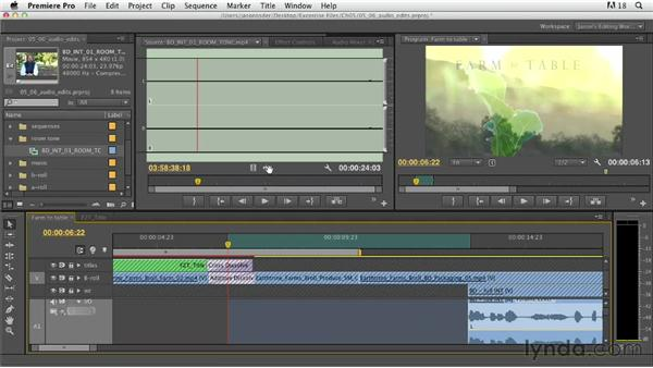 Fine-cutting audio: Documentary Editing with Premiere Pro