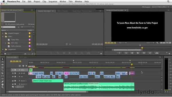 Locking the picture and preparing the Timeline for finishing: Documentary Editing with Premiere Pro