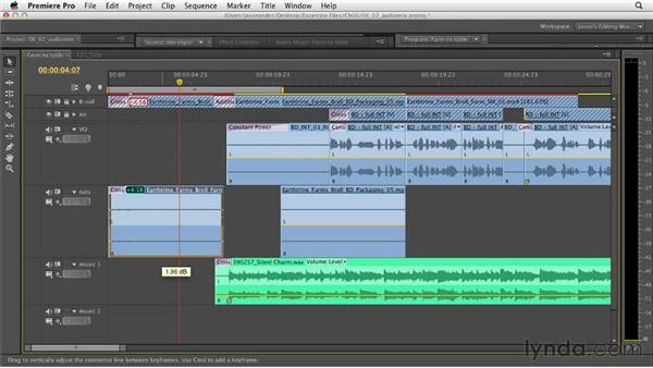 Polishing the final audio mix: Documentary Editing with Premiere Pro