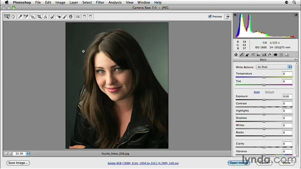 Deconstructing photos to study lighting: Lighting for Photographers: Portraiture