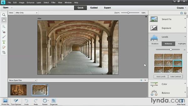 Adjusting lighting: Up and Running with Photoshop Elements 11