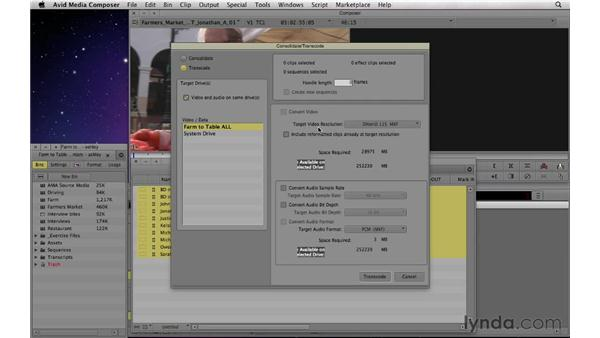 Understanding transcoding: Documentary Editing with Avid Media Composer