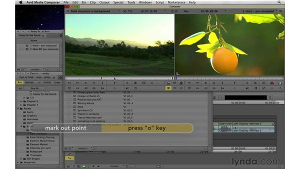 Adding natural and environmental sound: Documentary Editing with Avid Media Composer