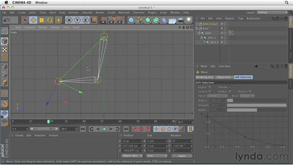 Exploring joint hierarchy: CINEMA 4D Essentials 8: Character Rigging and Xpresso