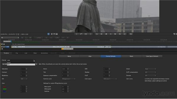 Correcting log and raw footage: Up and Running with SpeedGrade