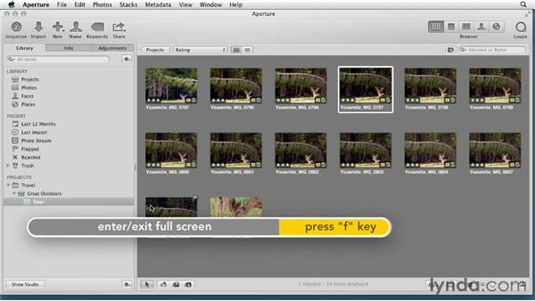 Touring the interface: Aperture 3 Essential Training (2012)