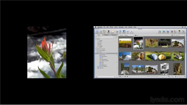 Setting up two monitors: Aperture 3 Essential Training (2012)