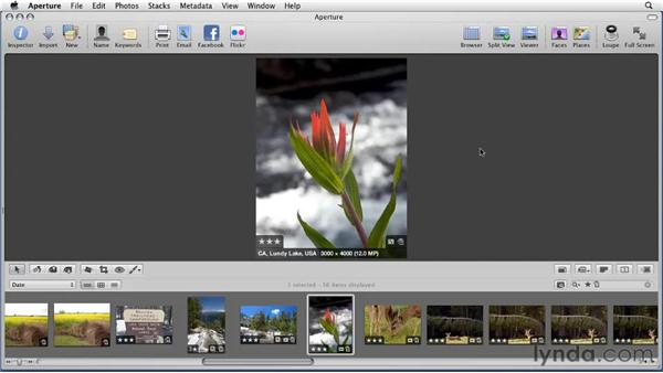 Customizing metadata overlays: Aperture 3 Essential Training (2012)