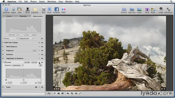 Adjusting tonality with the Levels tool: Aperture 3 Essential Training (2012)