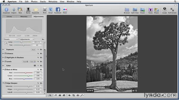 Converting color pictures to black and white: Aperture 3 Essential Training (2012)